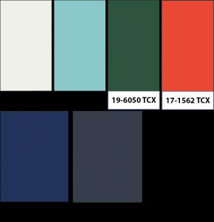 Paletas de color masculina