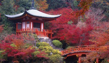 Top 5 de los lugares para vivir un otoño de ensueño II
