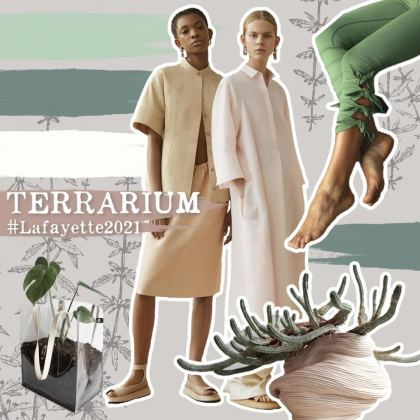 Tendencia Terrarium